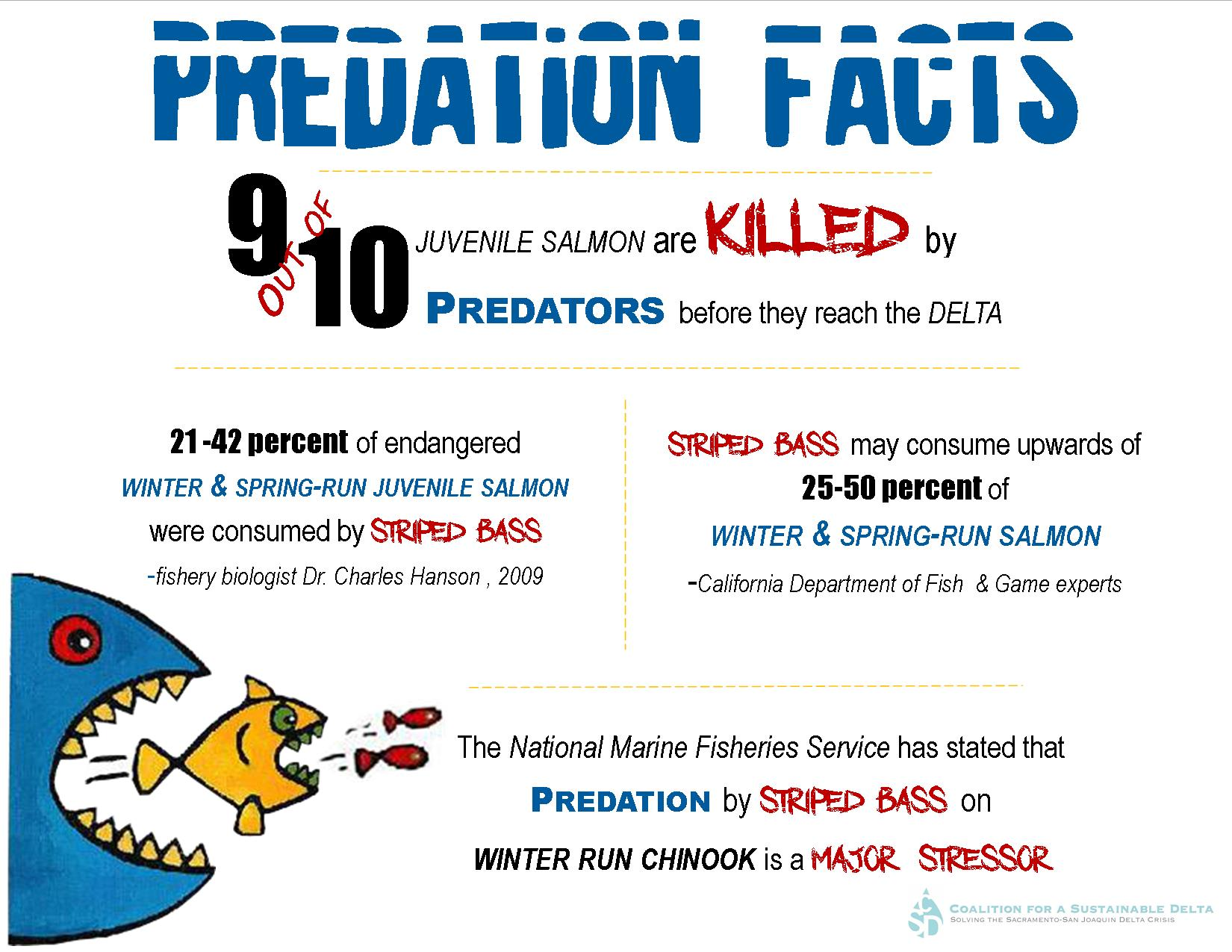 Predation Facts (landscape)